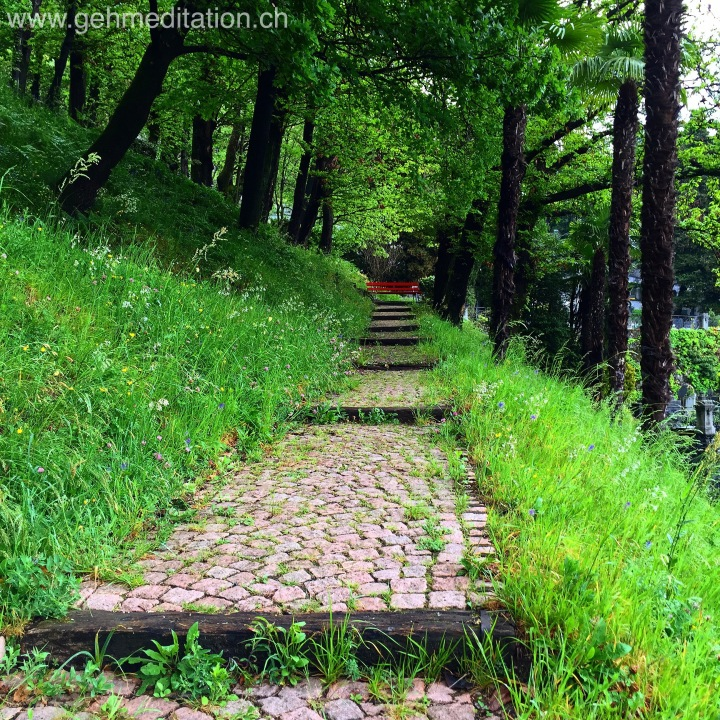 """""""Mein Leben ist eine Gehmeditation"""" (Thich NhatHanh)"""